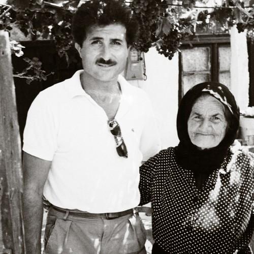 nikos olive grove